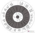 Whisky wheel